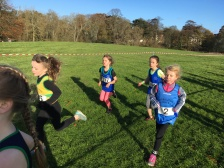Dublin Cross Country Uneven Age-05