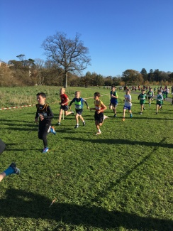 Dublin Cross Country Uneven Age-11