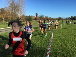 Dublin Cross Country Uneven Age-22