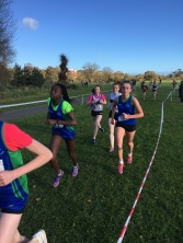 Dublin Cross Country Uneven Age-27