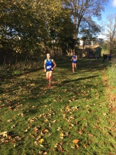 Dublin Cross Country Uneven Age-33