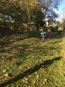 Dublin Cross Country Uneven Age-36