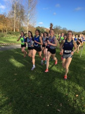 Dublin Cross Country Uneven Age-39